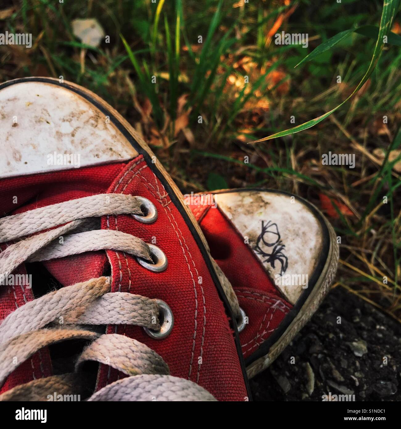 c8bd1c158e3843 Close up detail of an old discarded pair of red canvas shoes on grass -  Stock