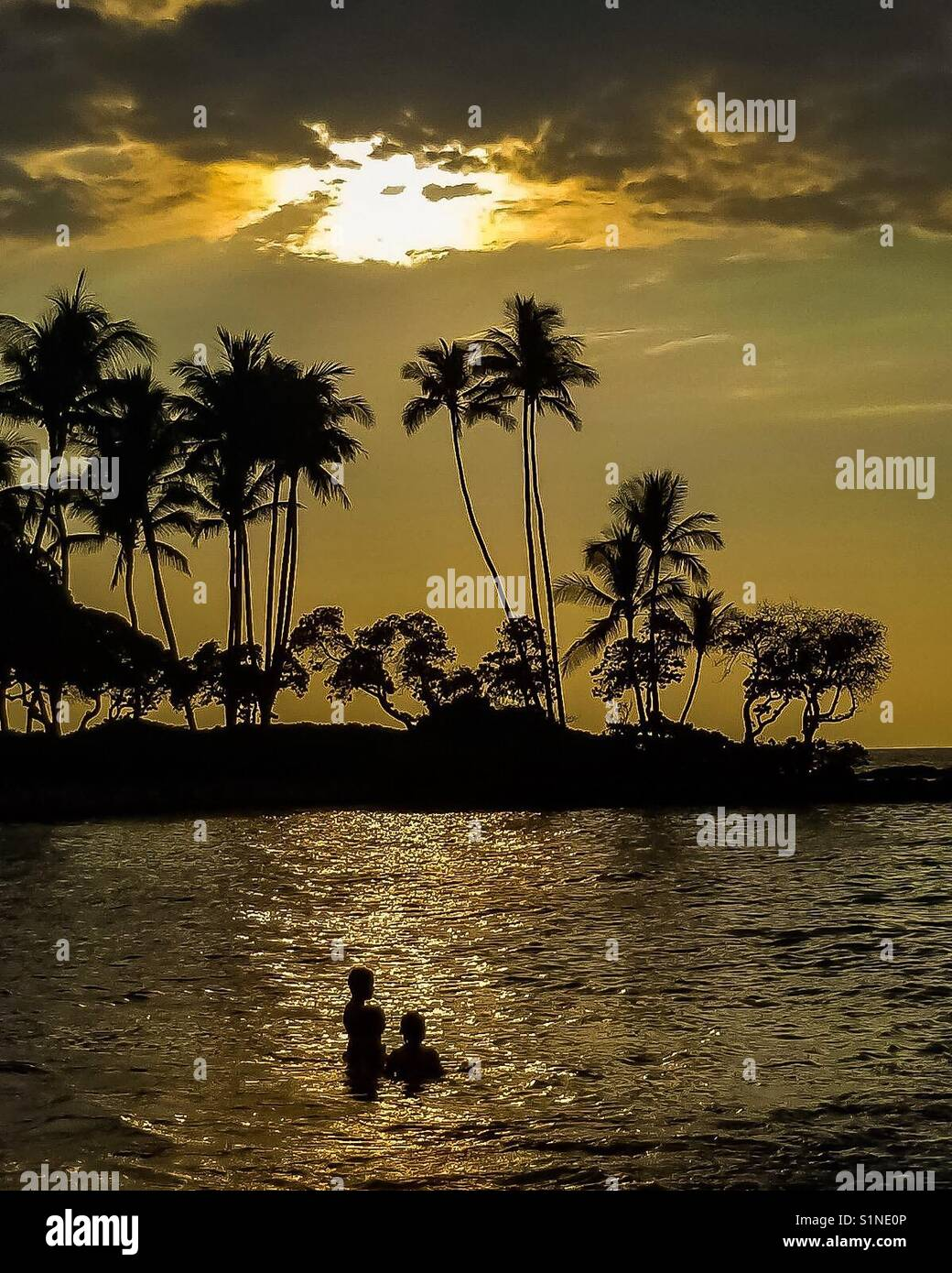 Vocation in Hawaii - Stock Image