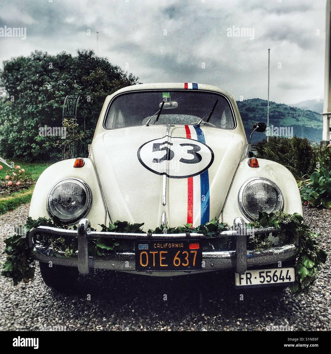 Herbie, VW Beetle used as wedding limo in Switzerland - Stock Image