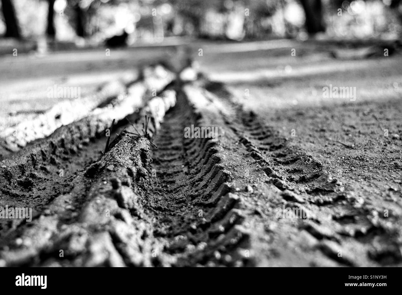 Bike trails on a dirty road - Stock Image
