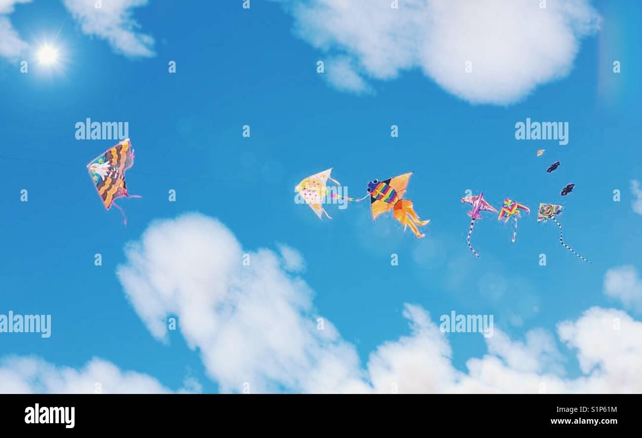 Flying kites - Stock Image