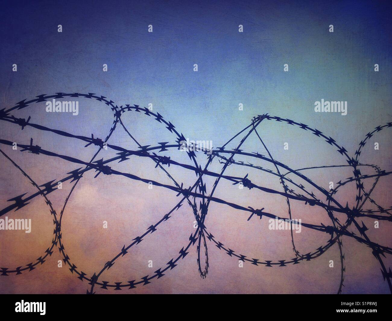Razor wire close up - Stock Image