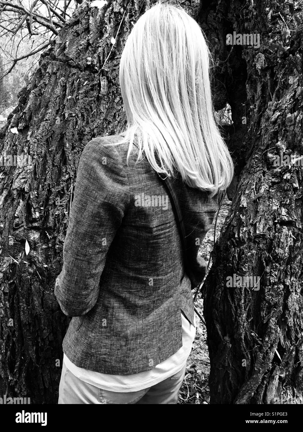 Standing next to an old tree - Stock Image