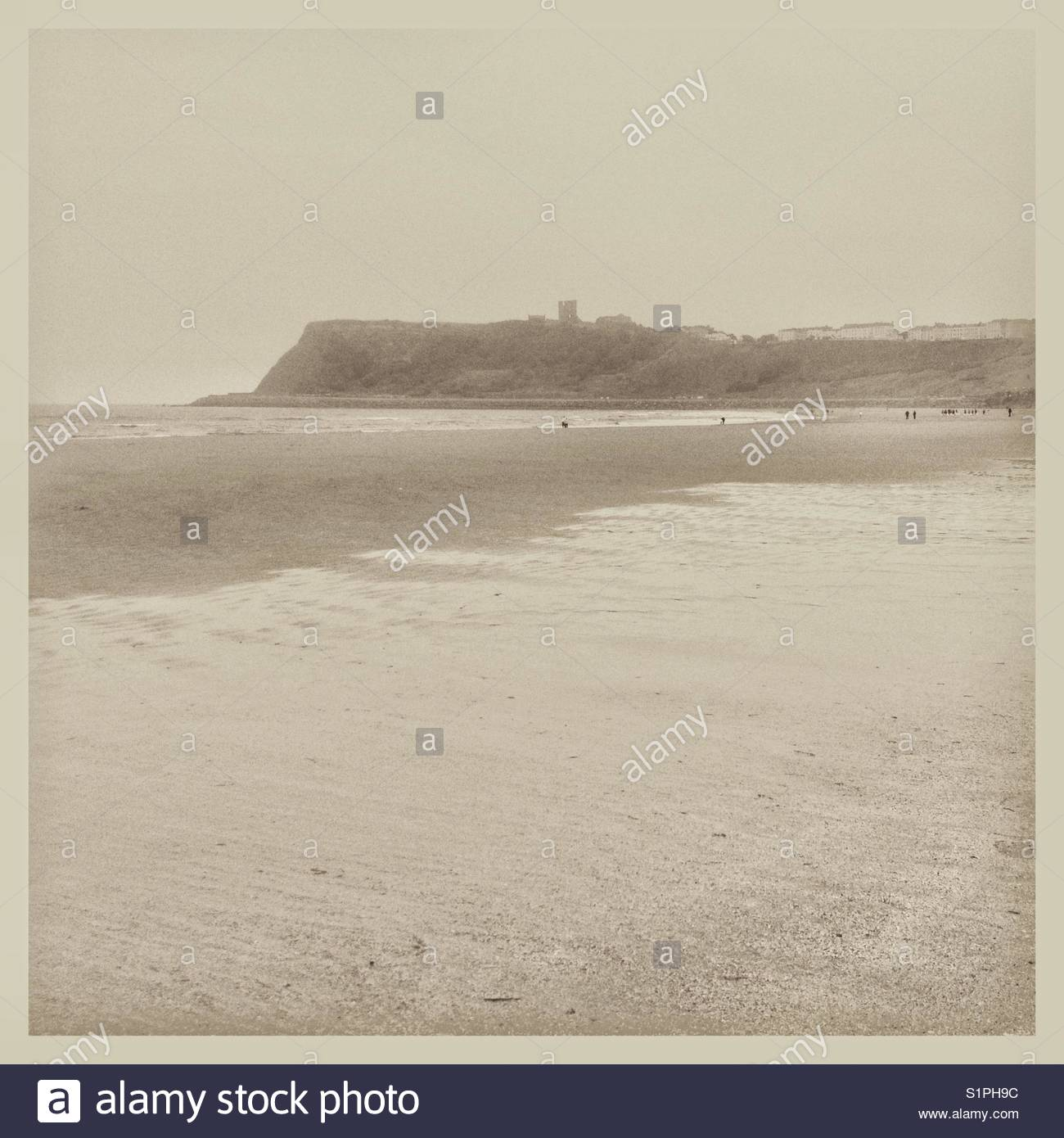 North Bay Scarborough UK at low tide - Stock Image
