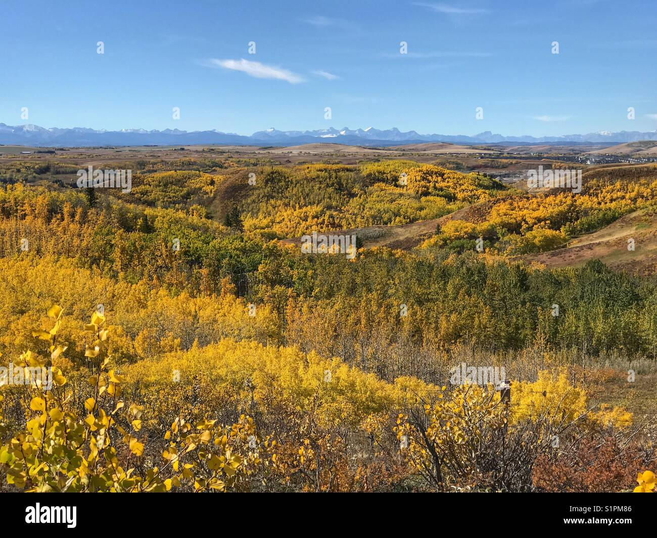Fall colours across the Alberta foothills, looking towards the Rocky mountains. Taken at Glenbow Ranch provincial - Stock Image