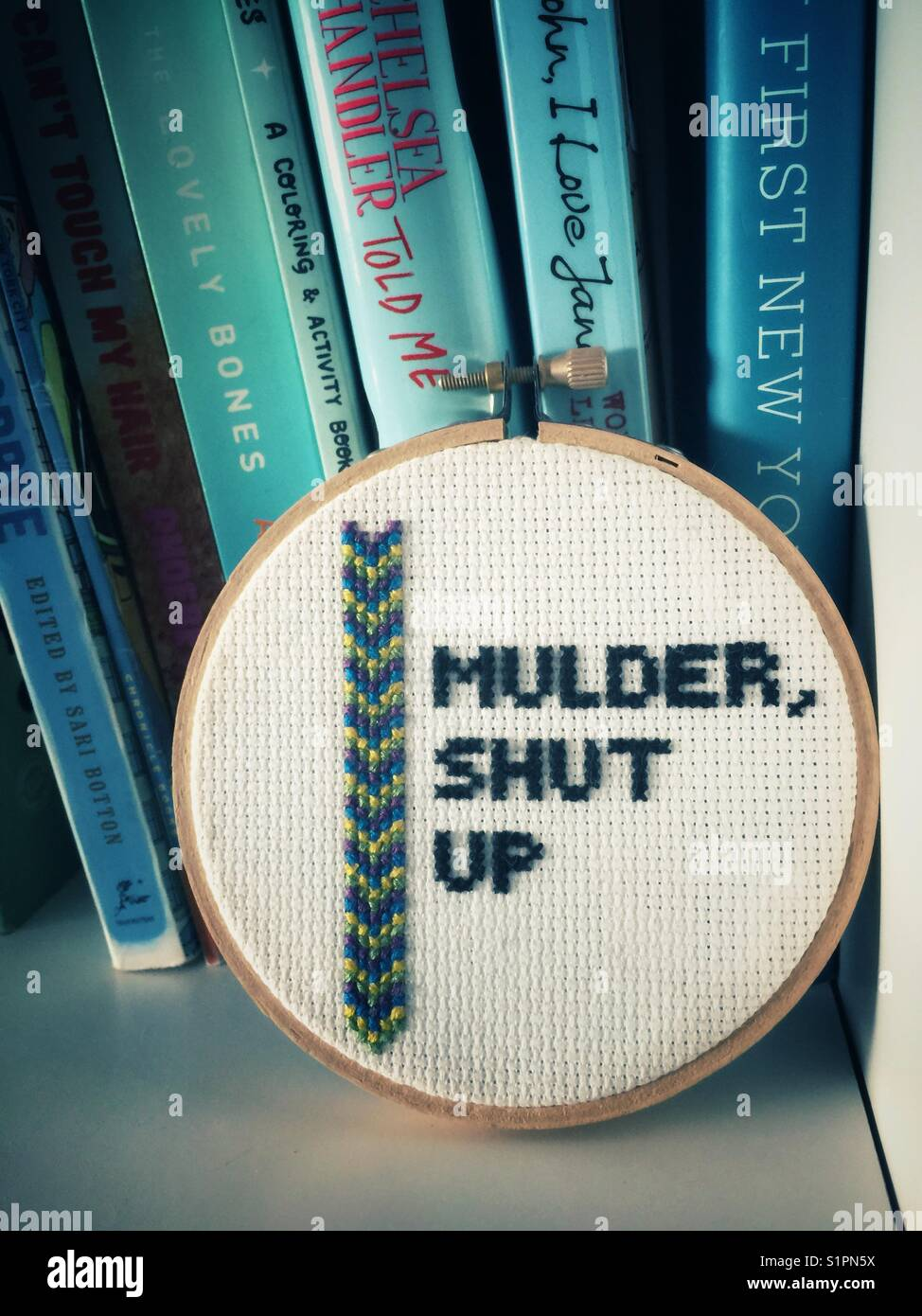 "A round counted cross stitch on a bookshelf that says ""Mulder shut up"". A reference to the X-Files television show - Stock Image"