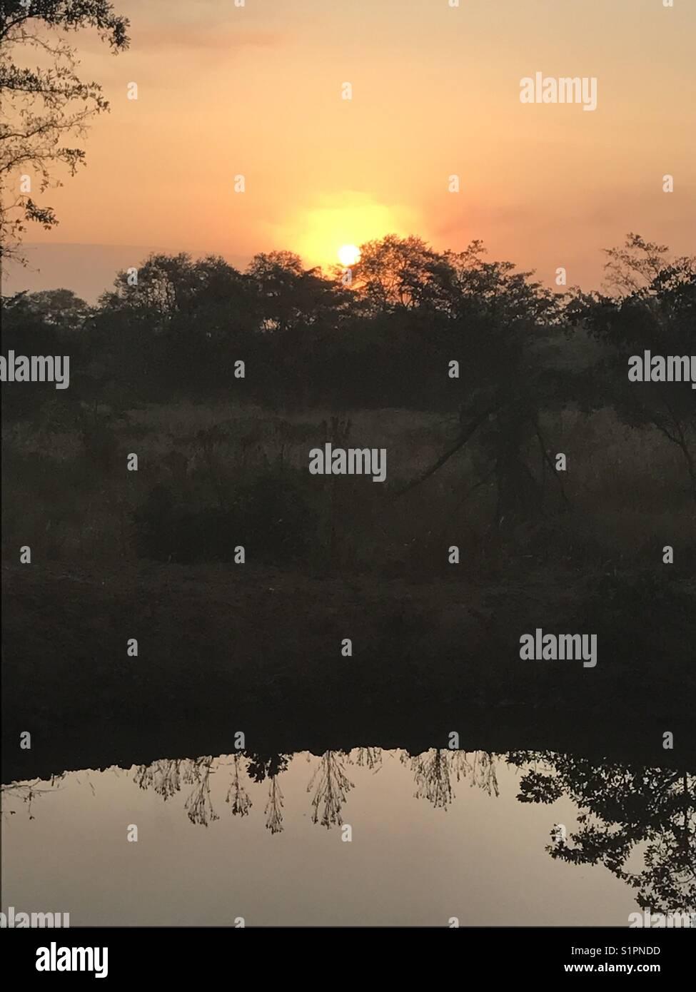 Bushveld sunrise - Stock Image