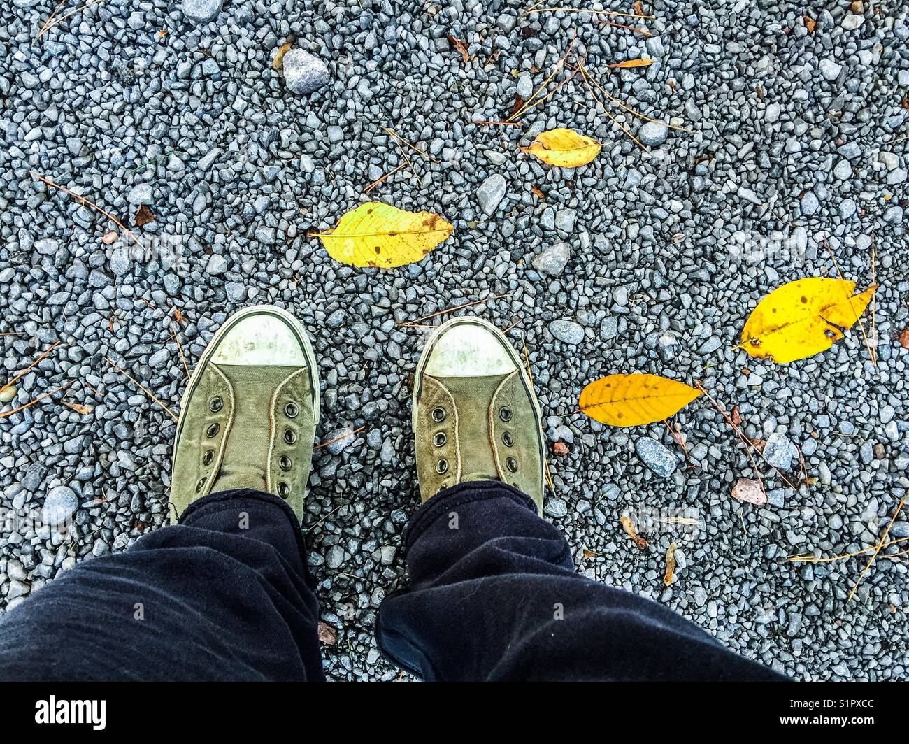 Birdseye view of person wearing green vintage sneakers standing on gravel with yellow fall leaves - Stock Image