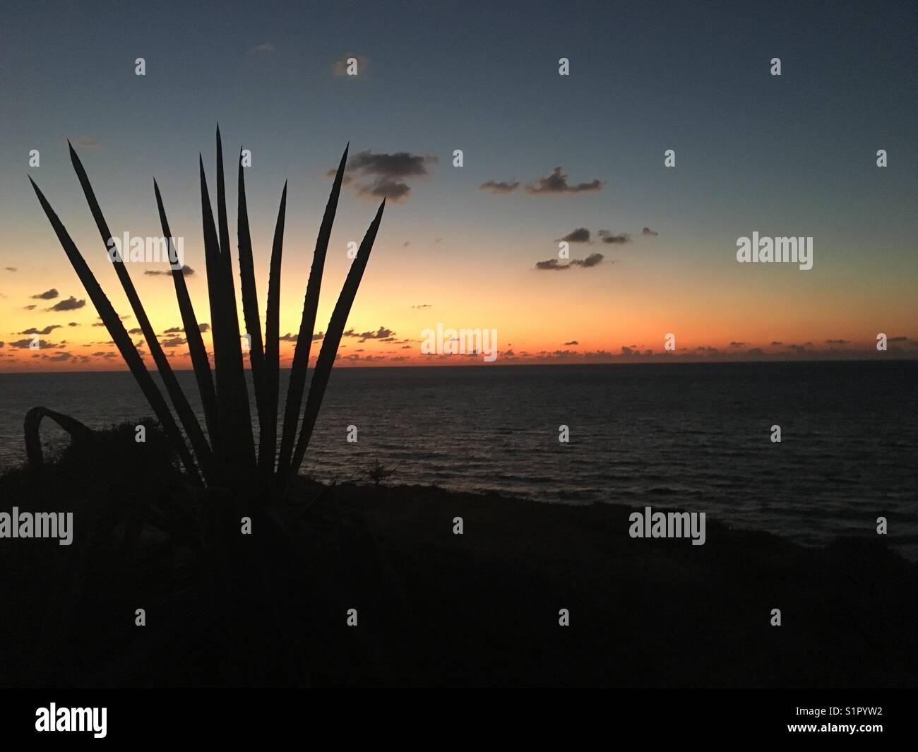 Ga'ash beach in Israel, sunset - Stock Image