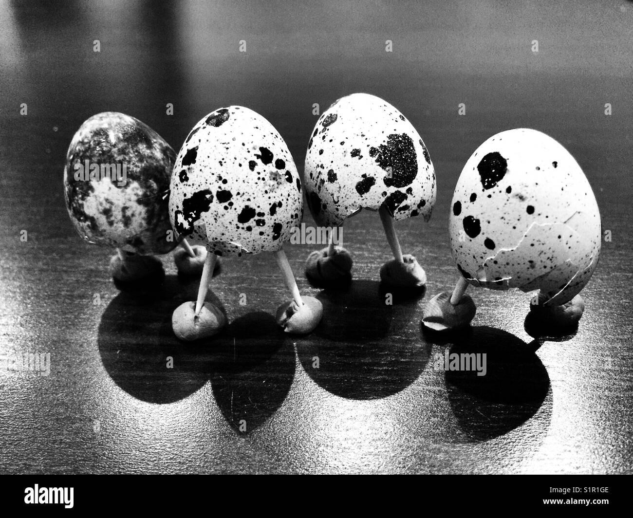 The quail mafia - Stock Image