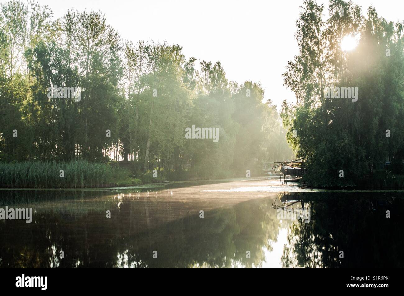 Morning on the lake. - Stock Image