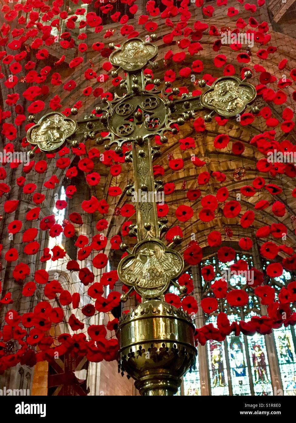Cascade of Poppies and Brass Cross - Remembrance - Stock Image