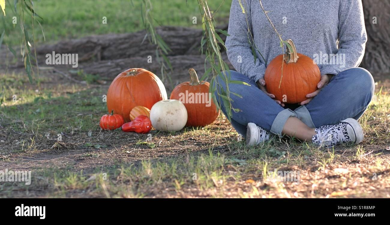 Pumpkin mornings - Stock Image