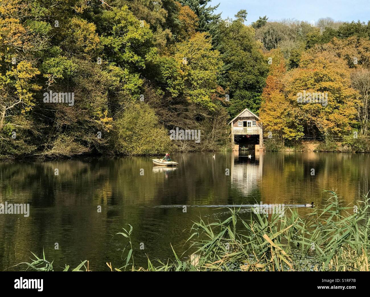 UK Weather: Sunny in Godalming. Winkworth Arboretum, Godalming. 30th October 2017. Beautiful sunshine over the Home - Stock Image