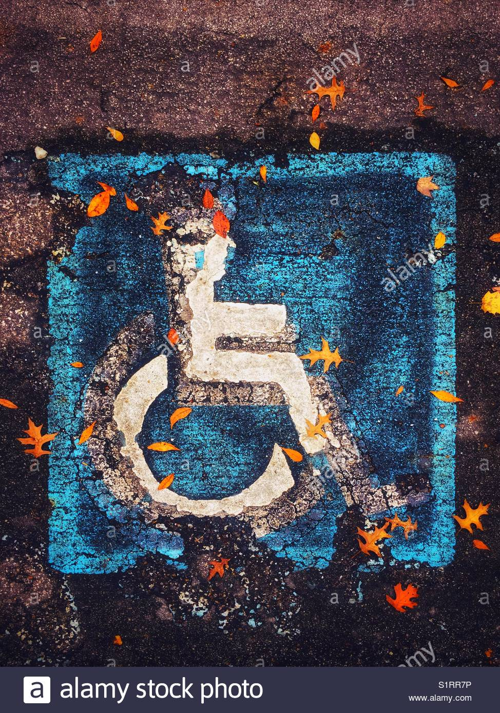 Worn out handicapped parking spot sign with scattered leaves - Stock Image