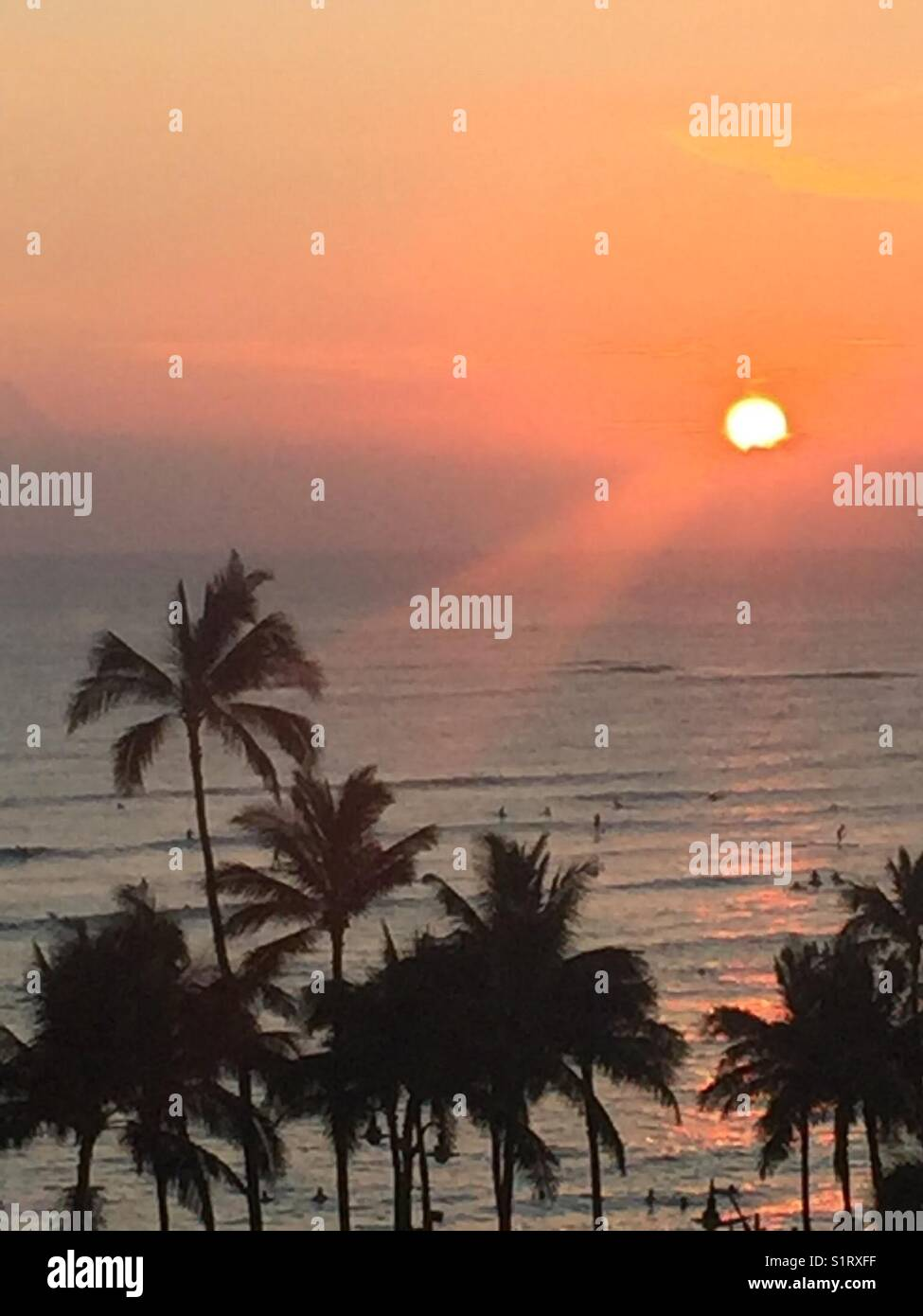 Tropical Sunset Waikiki Beach Honolulu Hawaii Stock