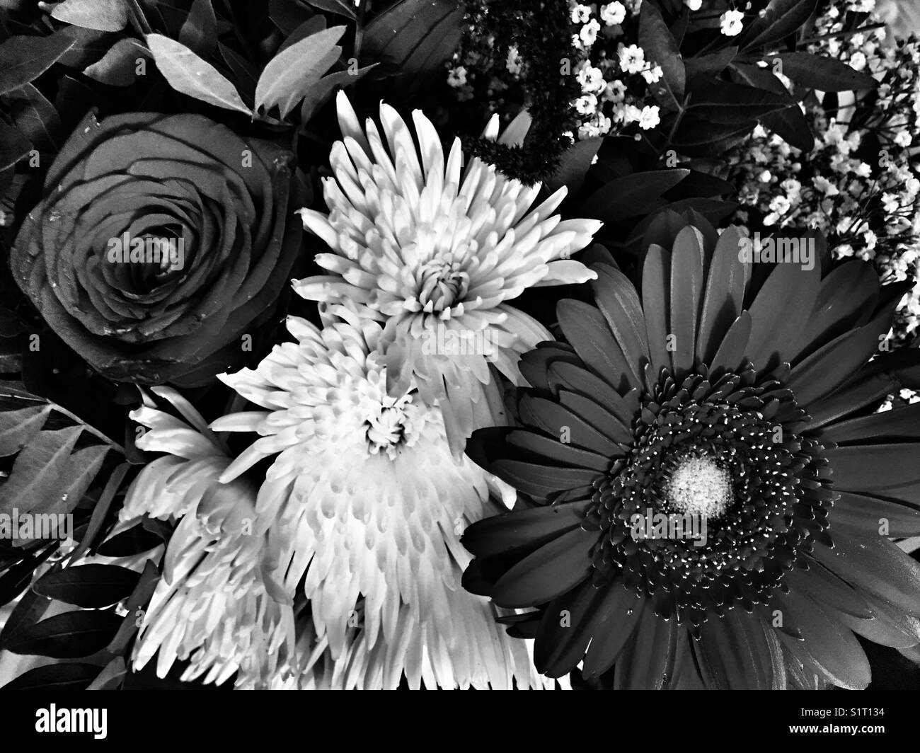 Flowers bouquet black and white stock photos images alamy black and white flowers bouquet 2017 stock image izmirmasajfo