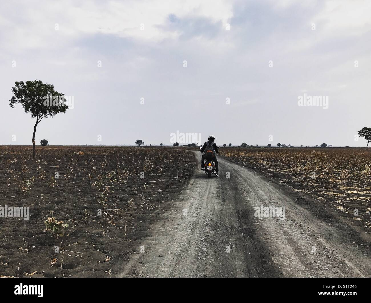 A lone rider !! - Stock Image