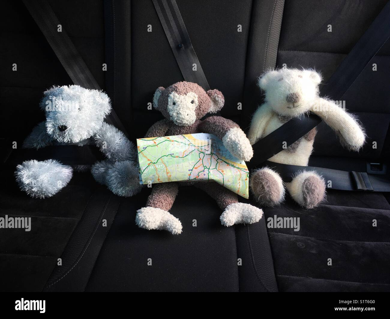 Children's soft toys strapped into the bag seat of a car about to embark on a journey. - Stock Image