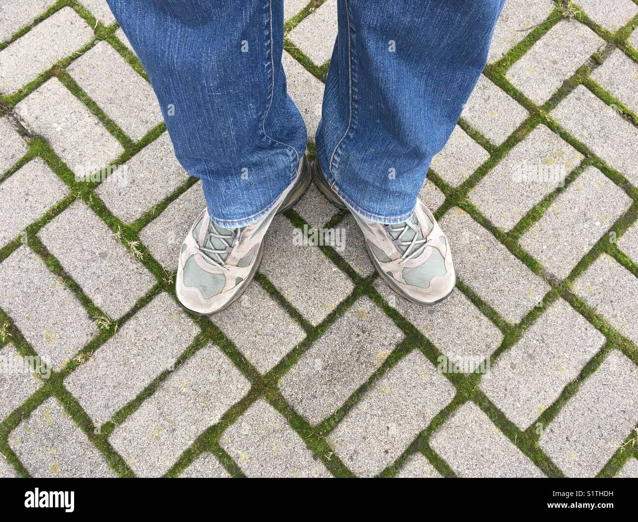 Human feet wearing sneakers standing on a pavement - Stock Image