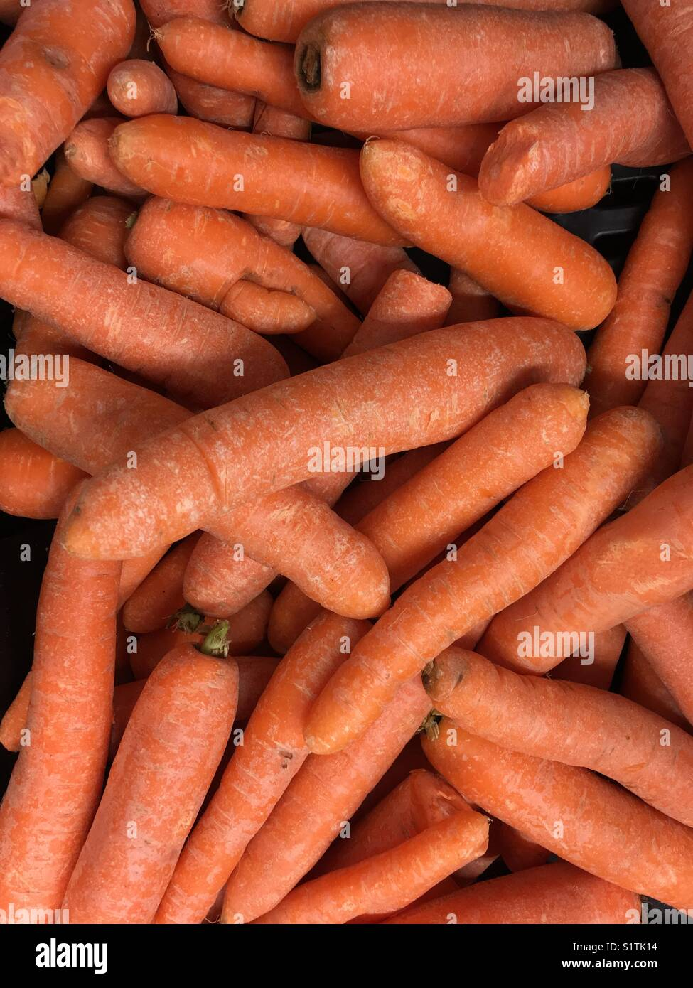 English carrots - wallpaper or background photo. - Stock Image