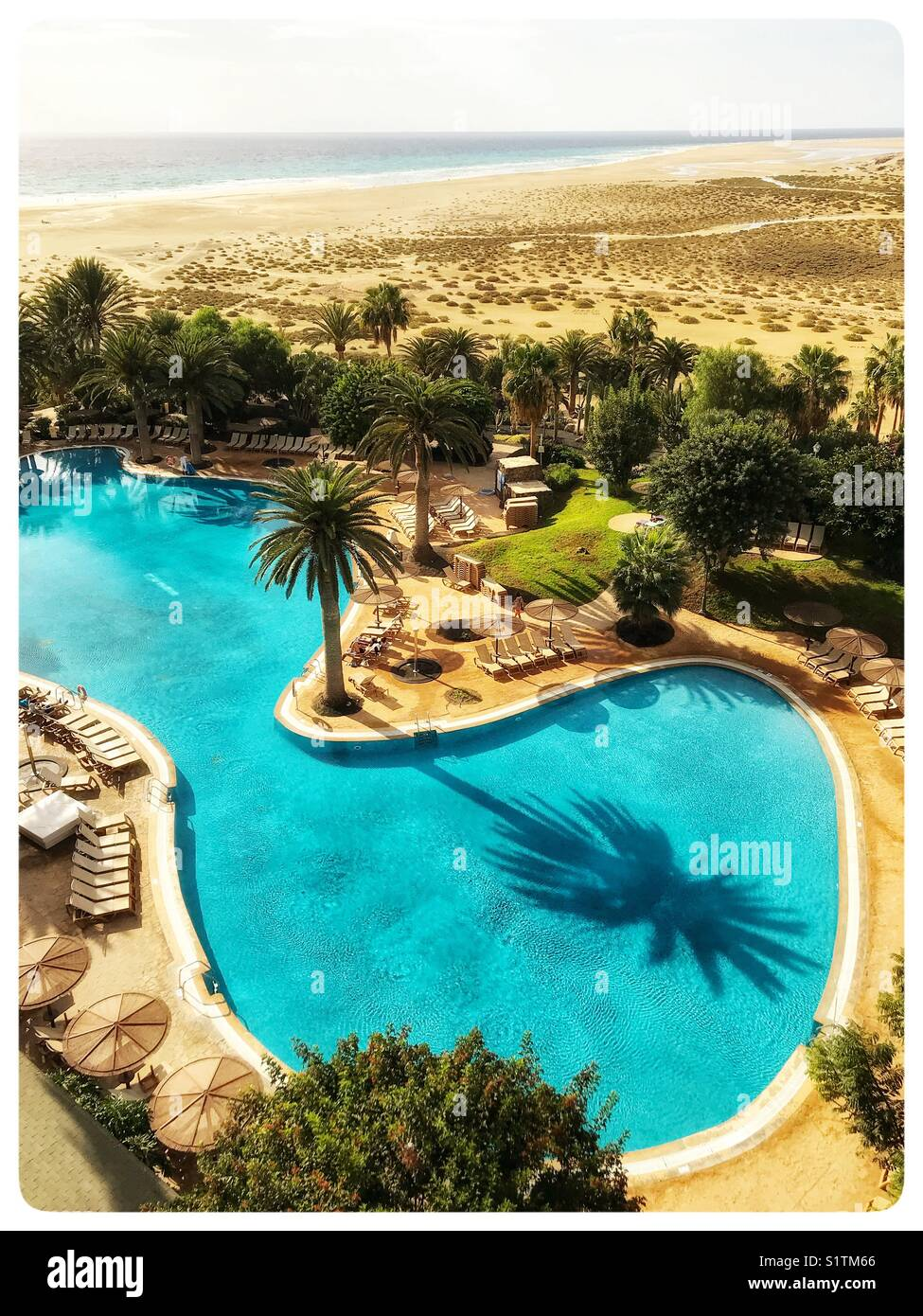 An aerial view of a beautiful shaped swimming pool surrounded by trees in Fuerteventura, Spain. - Stock Image
