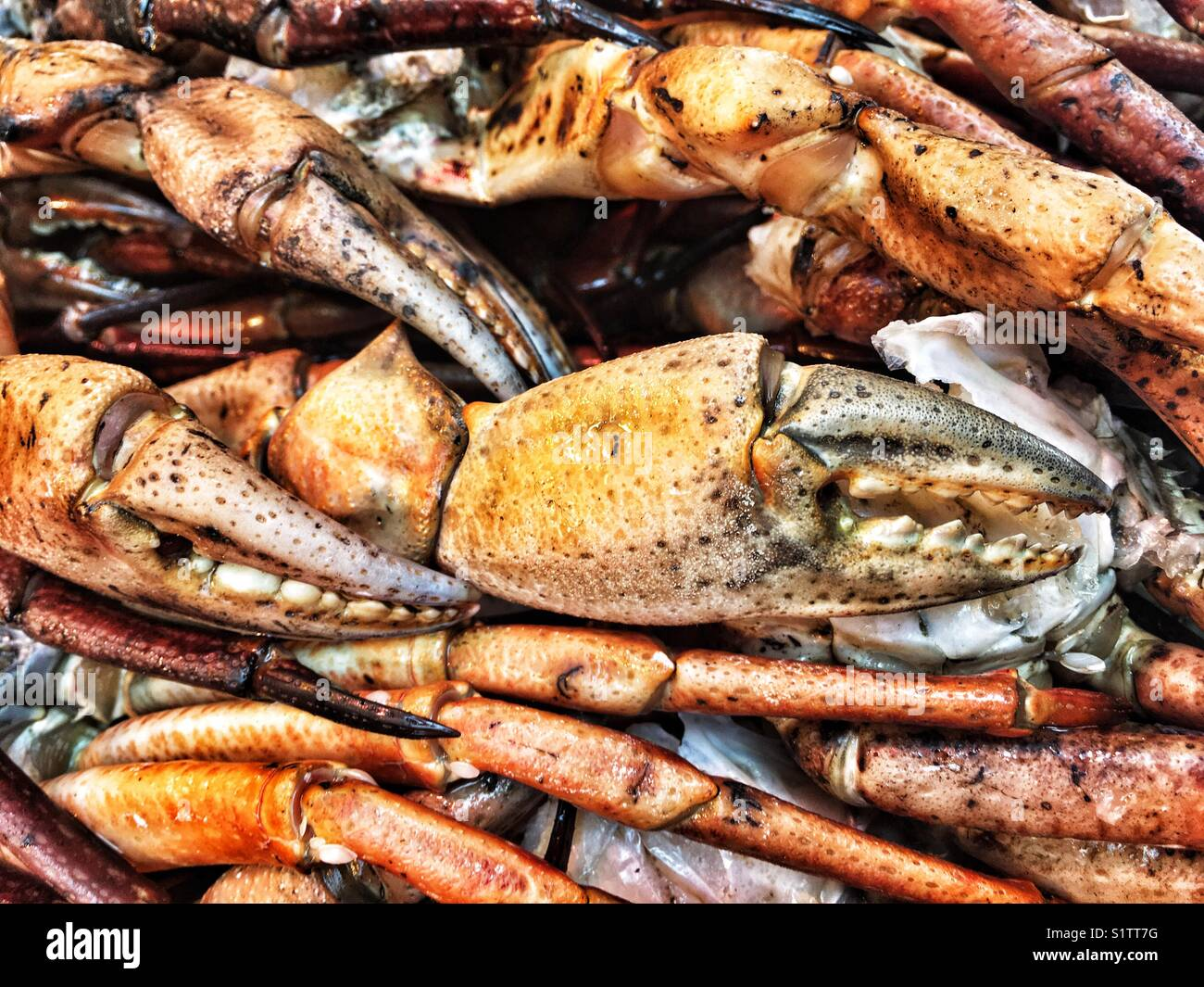Crabs legs and claws on the market - Stock Image
