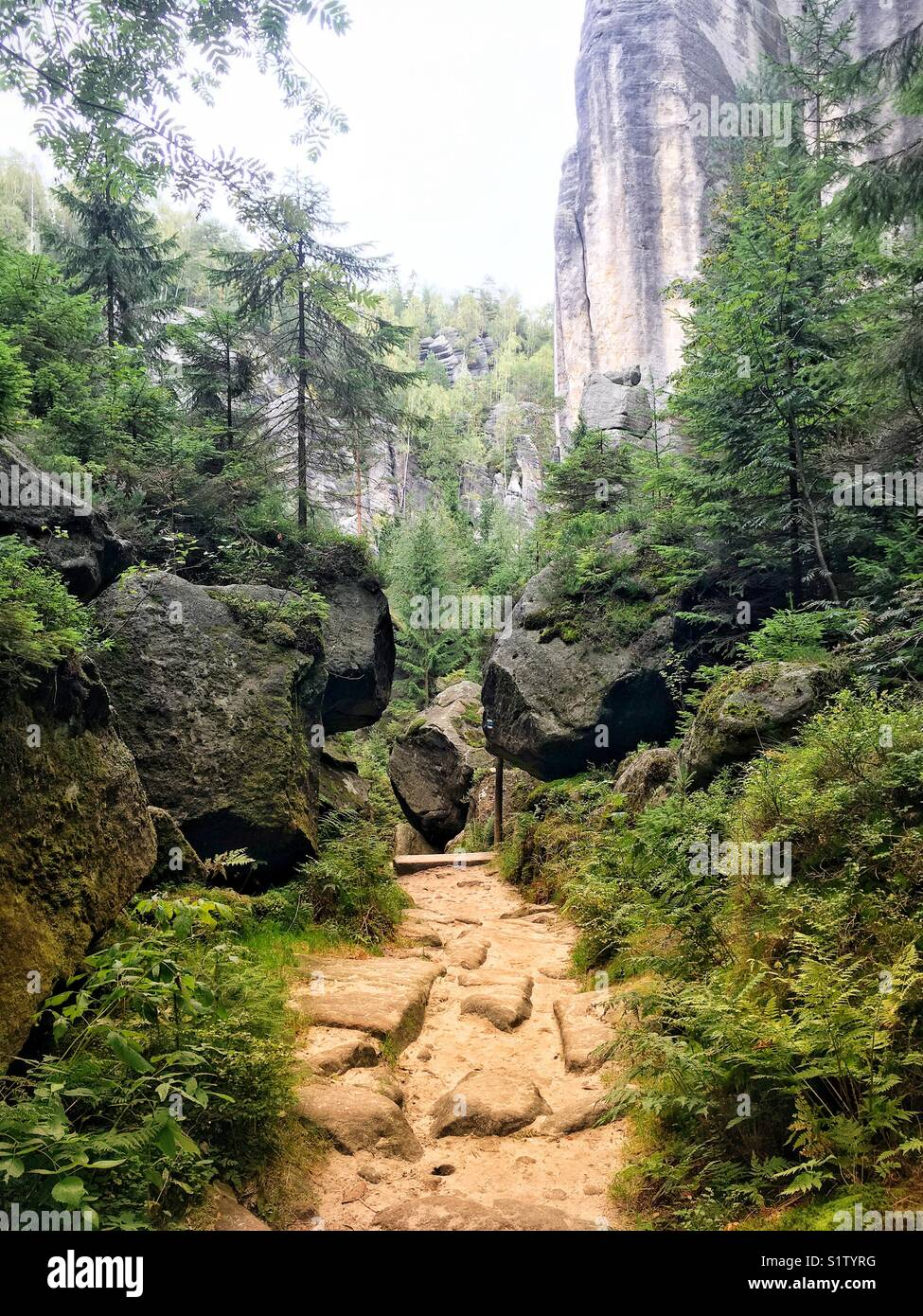 Tourist track in Adrspach Teplice Rocks Landscape park in Czech Republic - Stock Image