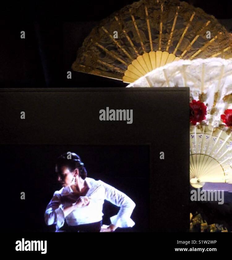Flamenco graphical - Stock Image
