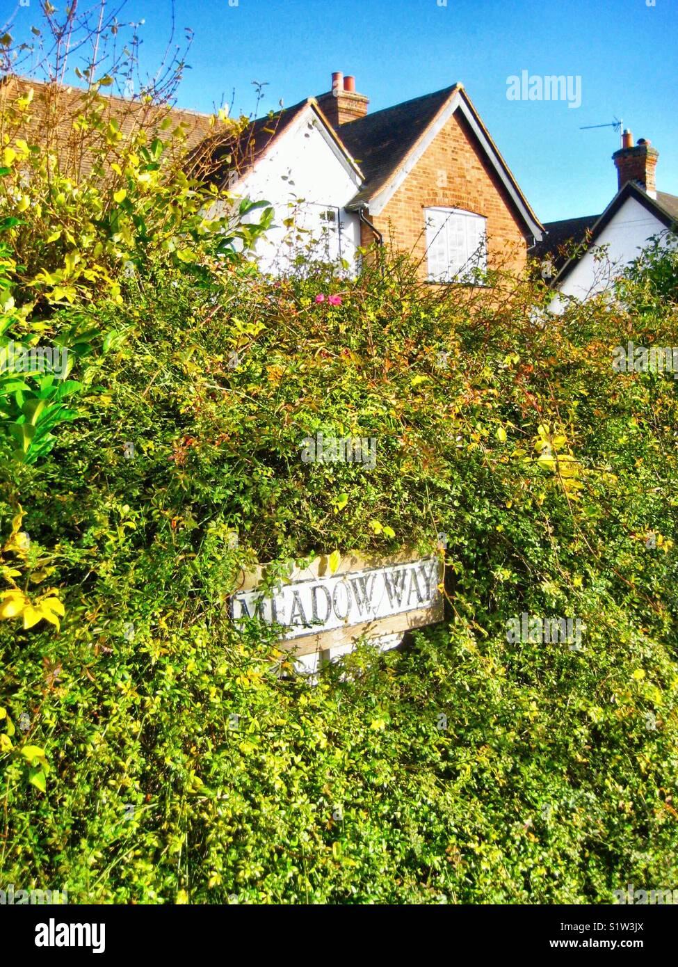 Meadow Way - Stock Image
