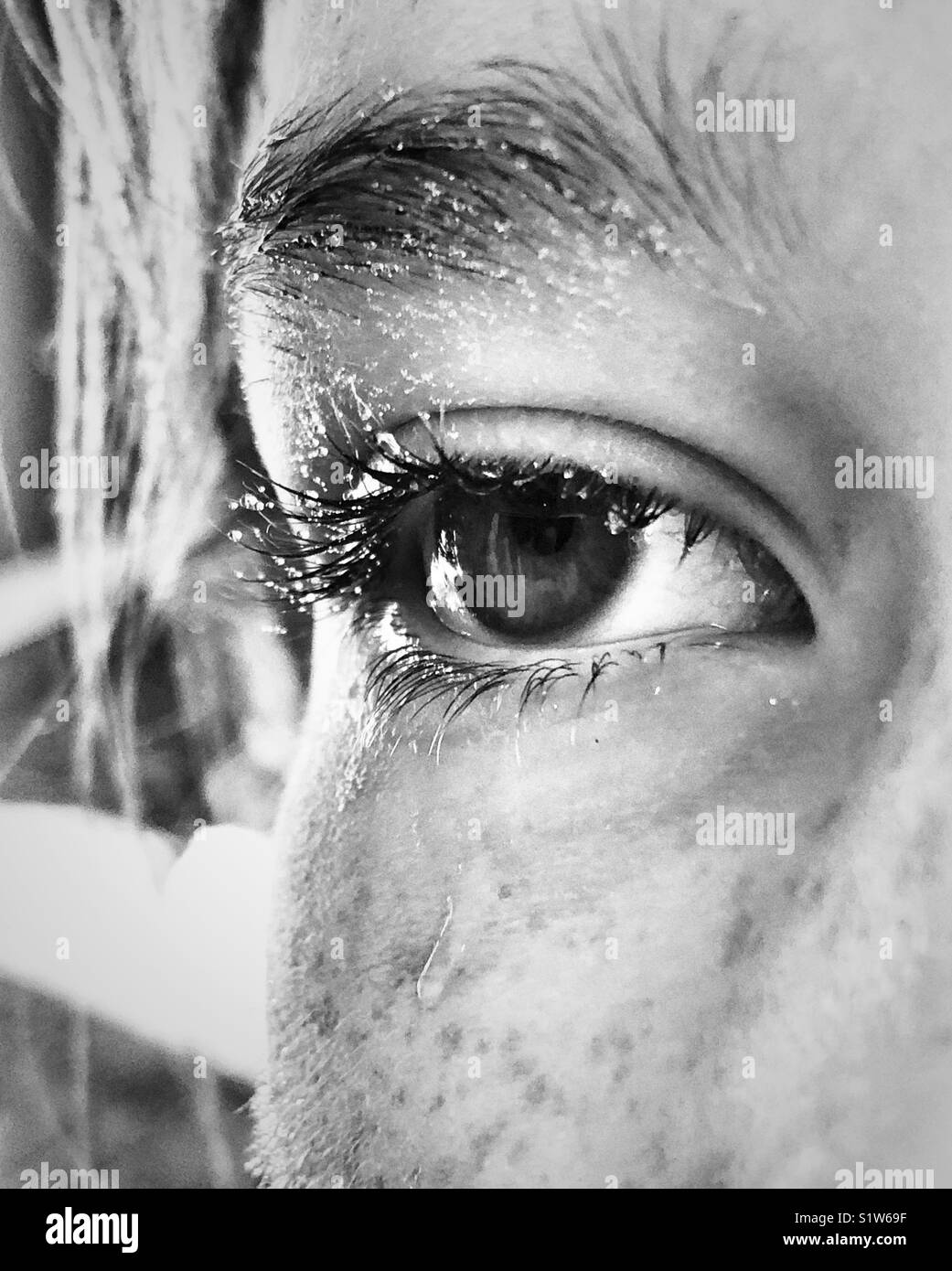 Closeup of girl's eye and partial face covered in water droplets that look like sweat or tears - Stock Image