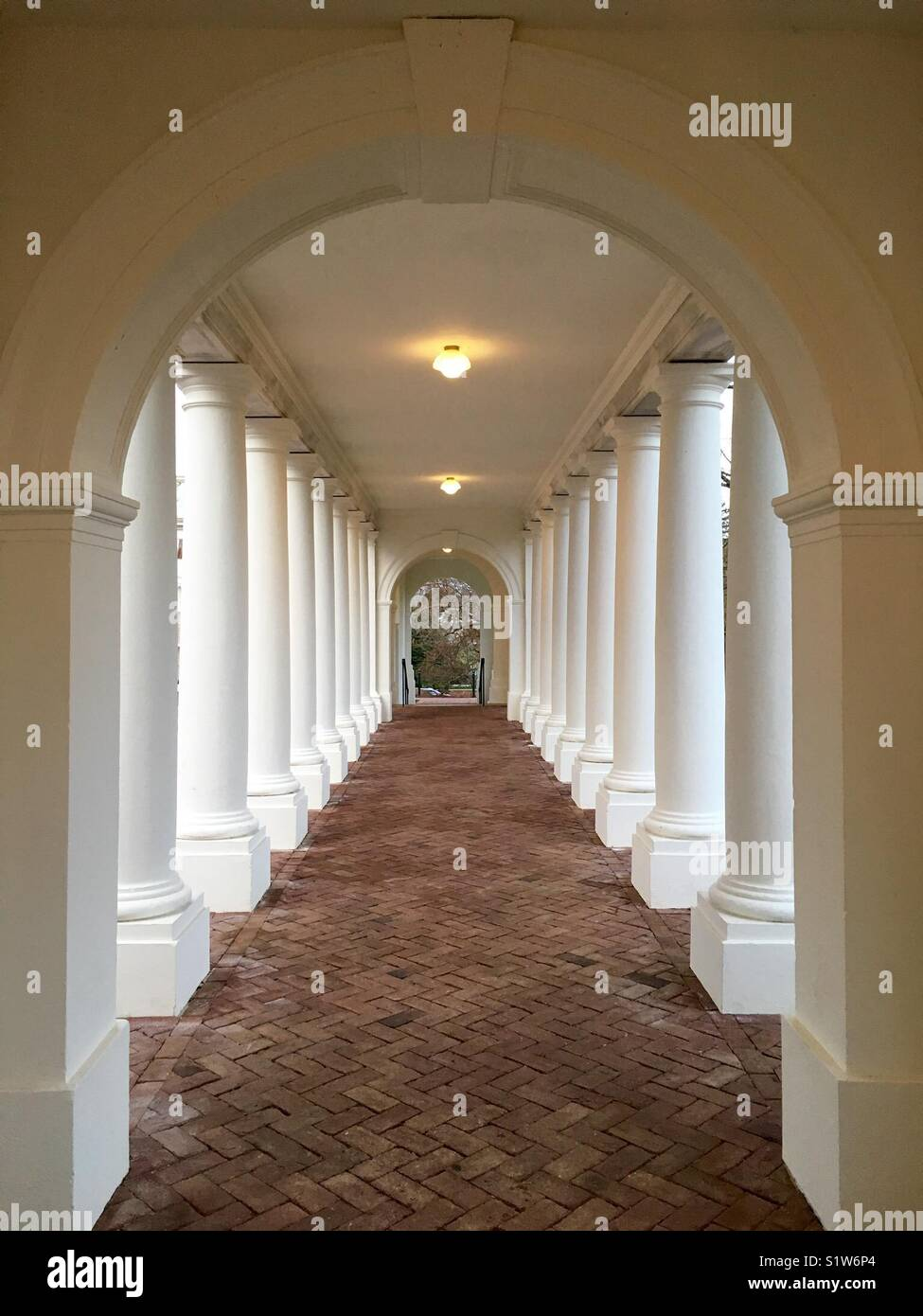 UVA colonnade - Stock Image