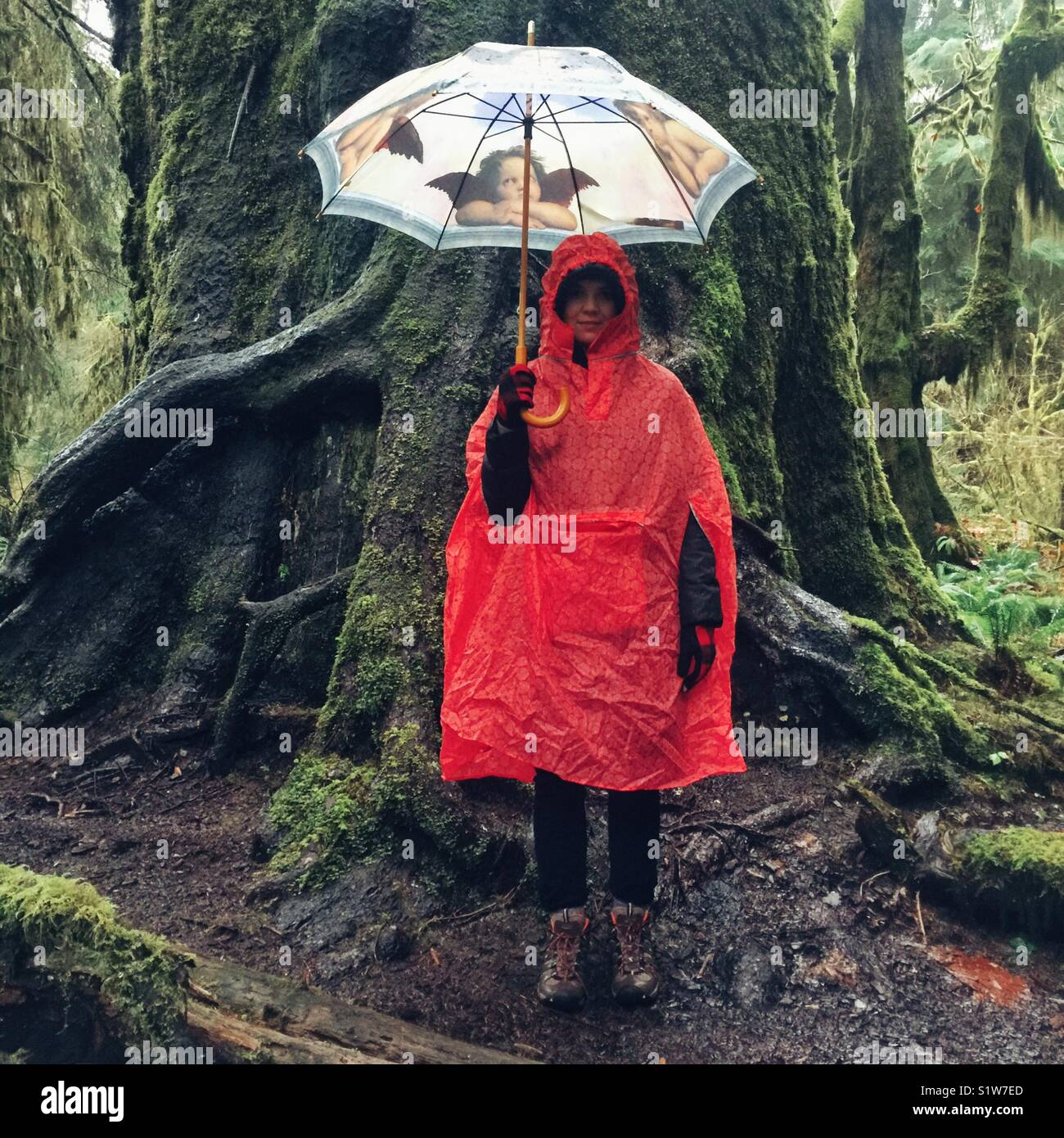 Young woman standing near the large tree in the rain with umbrella, dressed in rain poncho and hiking boots in Hoh - Stock Image