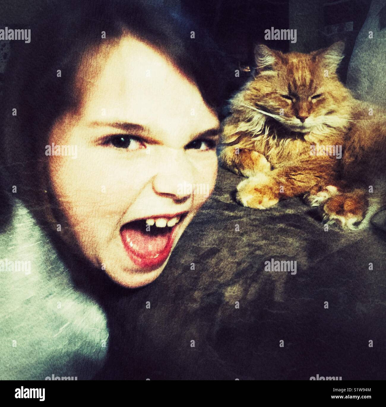Angry girl yelling with relaxed orange cat in background - Stock Image