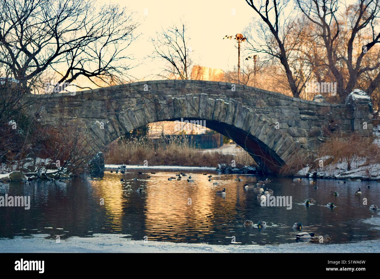 Gapstow Bridge - Stock Image