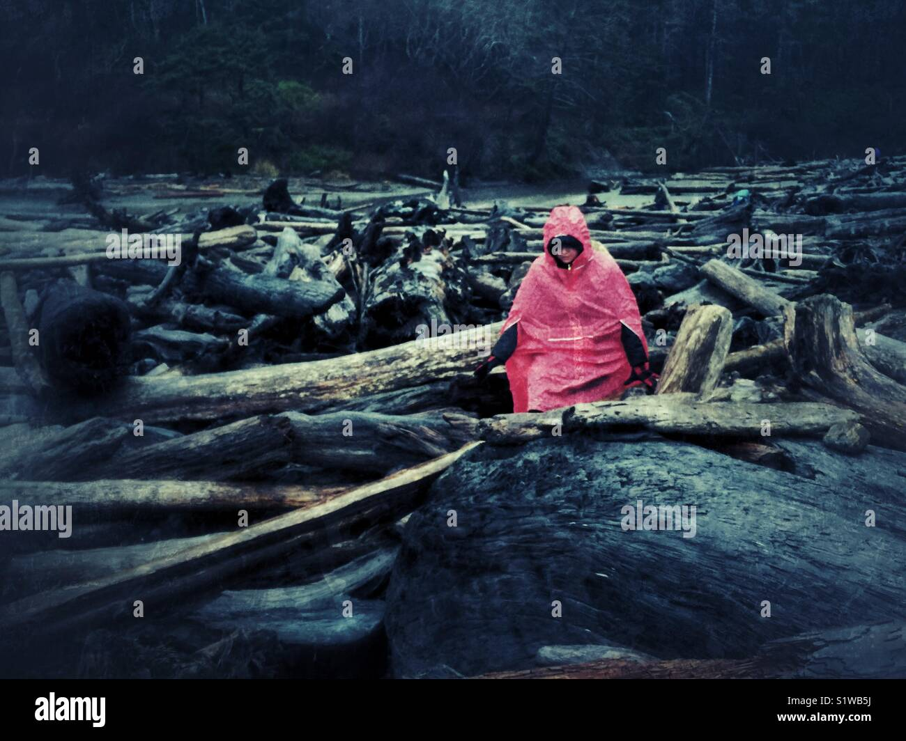 Hiker in red rain poncho climbing over huge logs on Ruby beach on Olympic peninsula - Stock Image