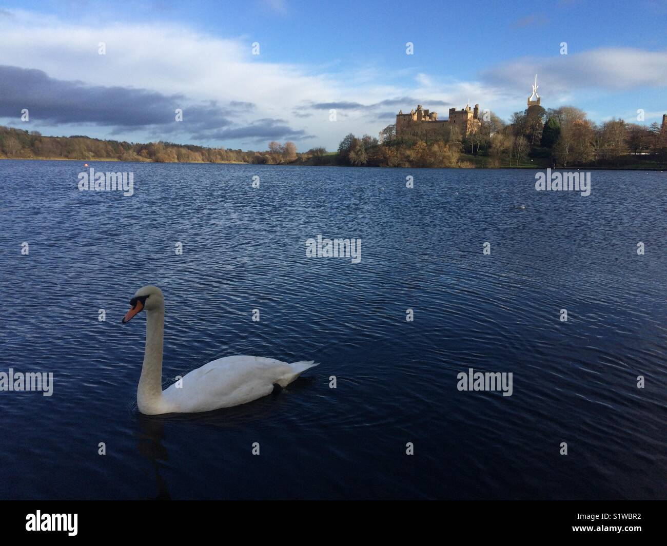 A day in The Loch - Stock Image