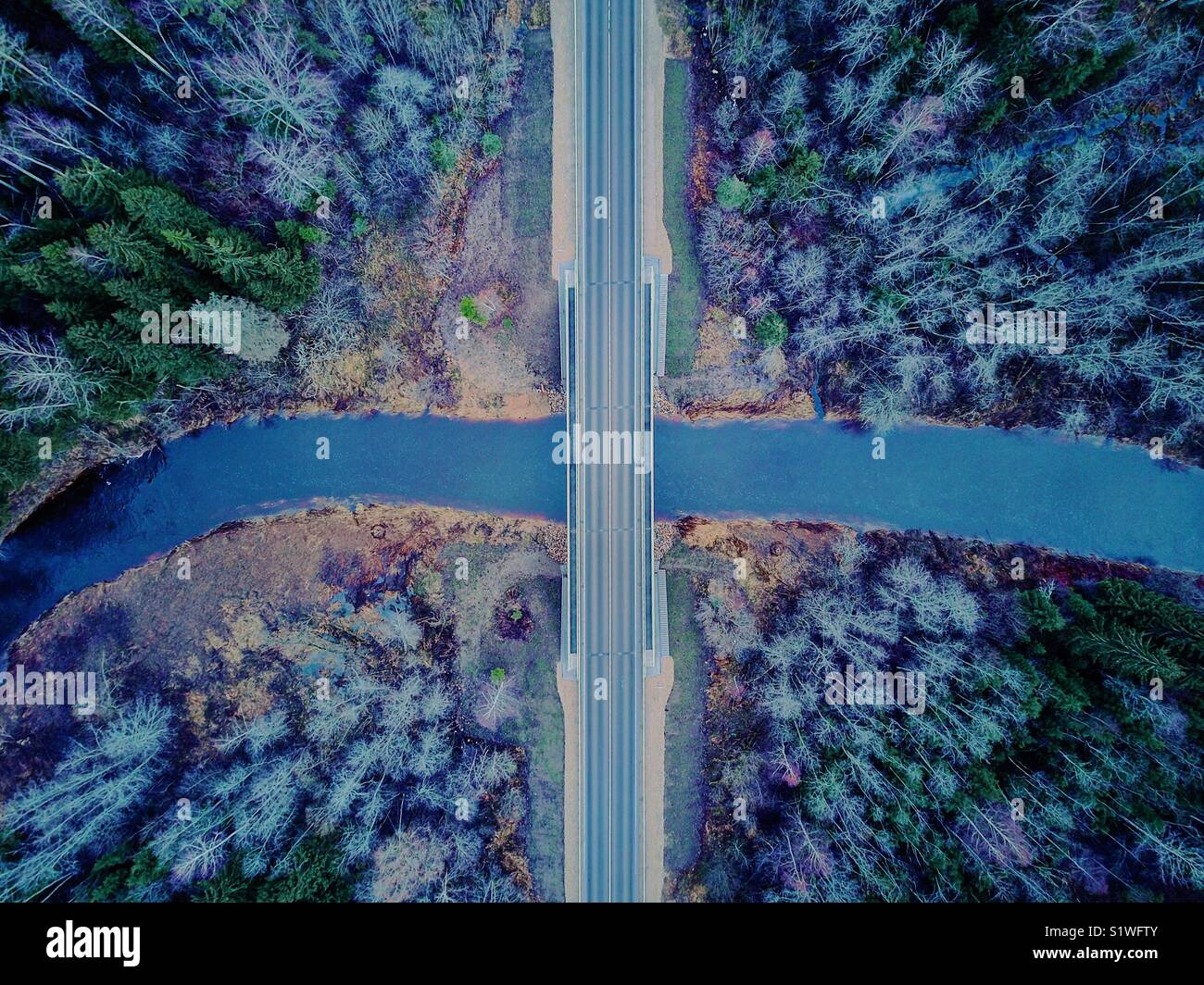 Drone picture of bridge in Latvian forest - Stock Image
