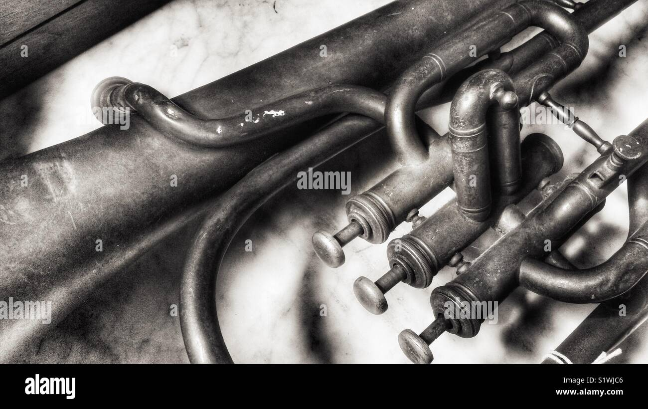 Baritone horn - Stock Image