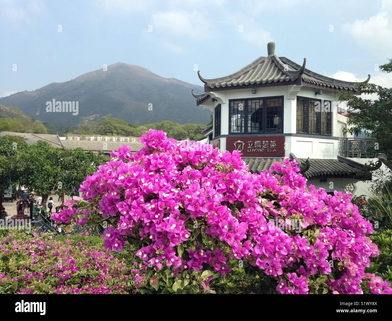Hong Kong Lantau Island. - Stock Image