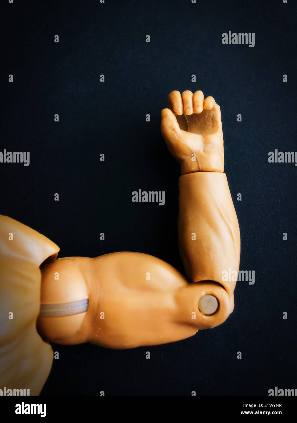 Close up of a plastic male doll arm flexing muscle. - Stock Image