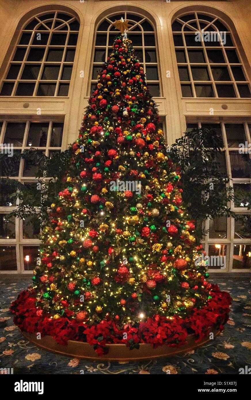christmas tree at hong kong disneyland hotel december 2017