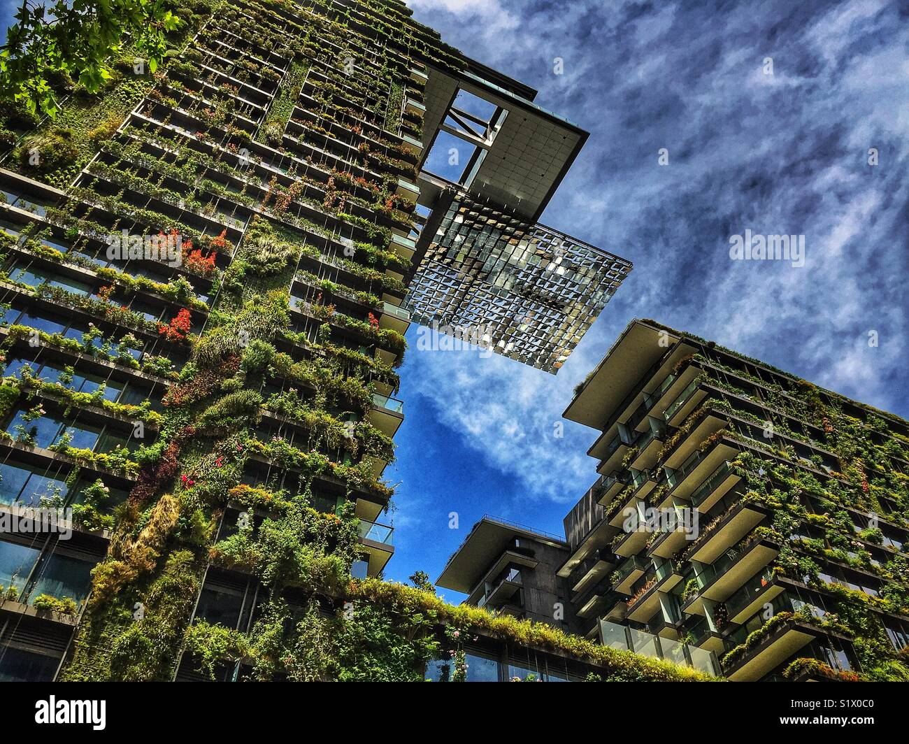 Central Park, a major mixed-use urban renewal project located on Broadway, Chippendale, in Sydney, Australia - Stock Image