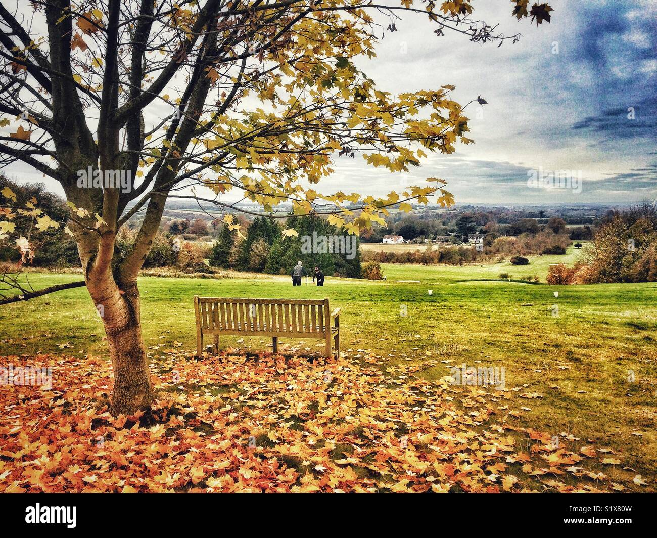 View across The Hampshire Golf club near Andover, Hampshire, England, UK Stock Photo