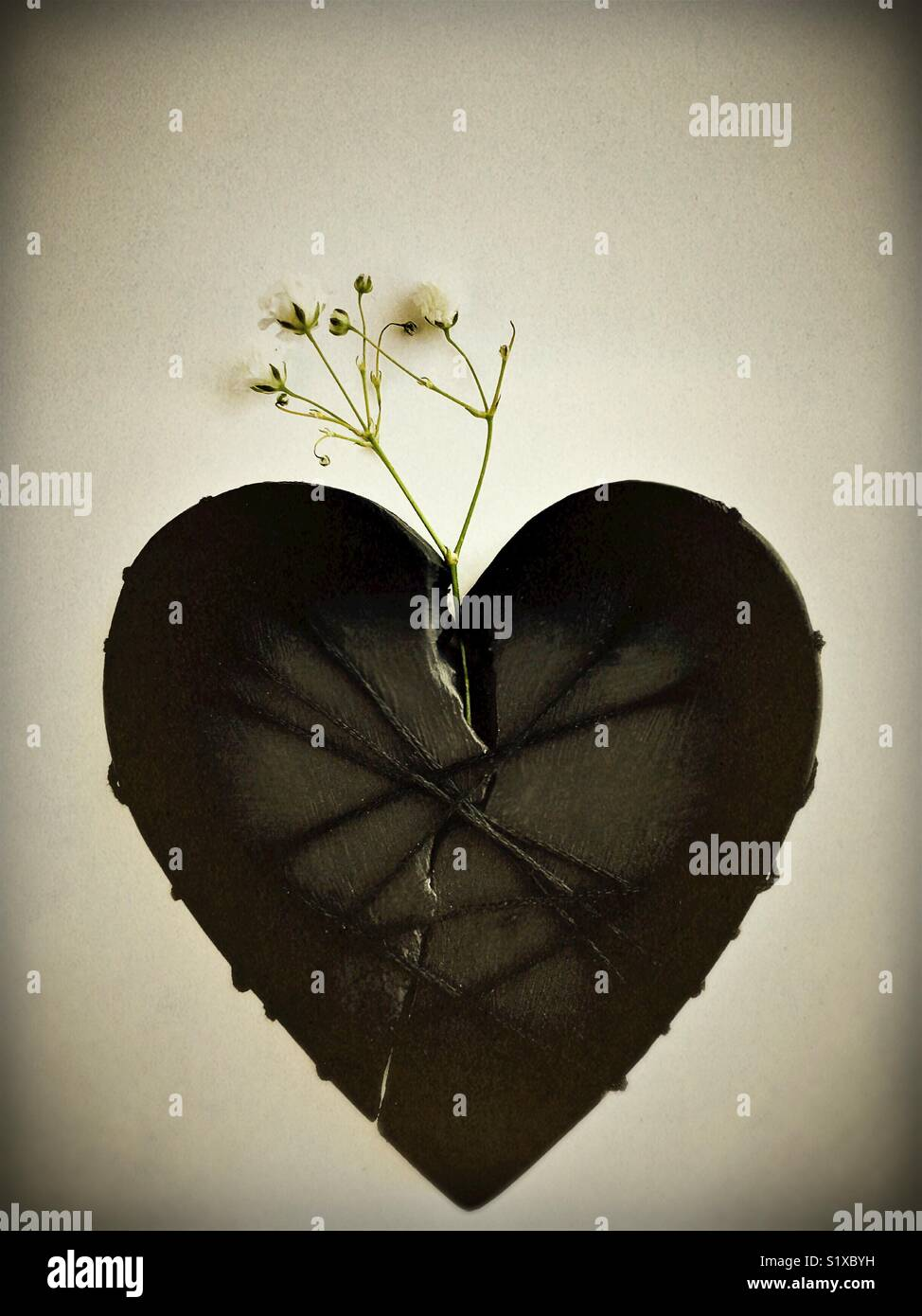 Conceptual: broken heart. - Stock Image