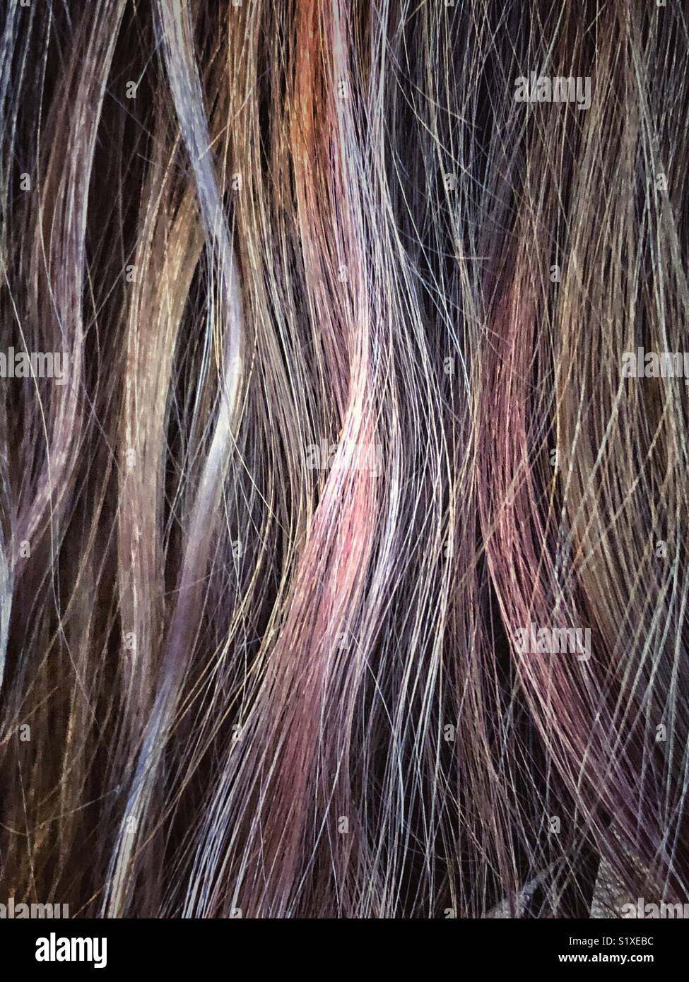 Closeup Of Brunette Hair With Pink And Purple Subtle