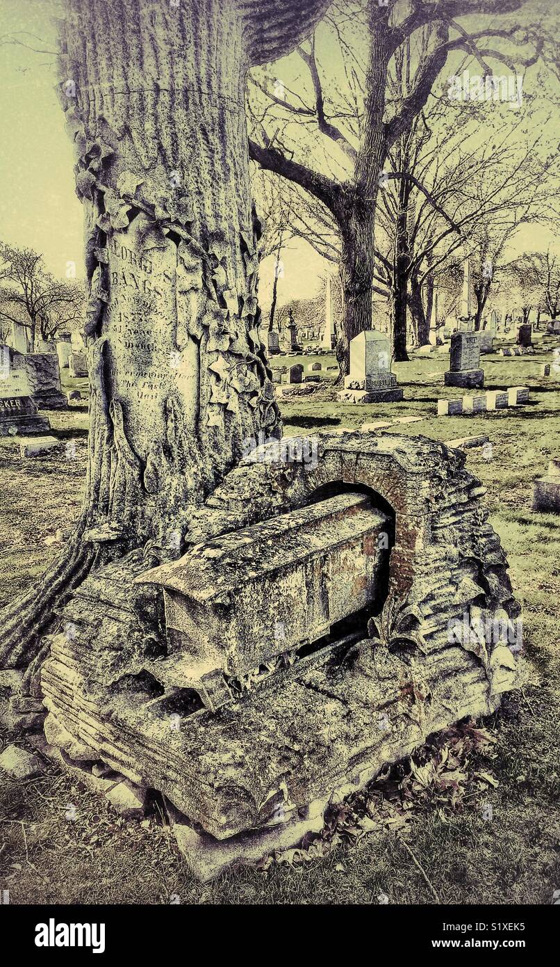 Tree trunk, railroad and tunnel monument to George Bangs, inventor of railroad mail cars, Rosehill Cemetery, Chicago, - Stock Image