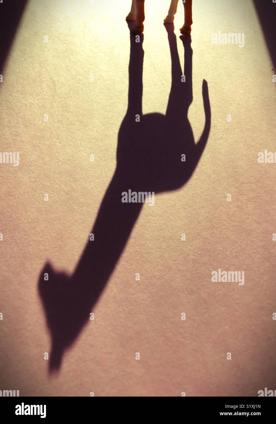 Shadow of giraffe toy. - Stock Image