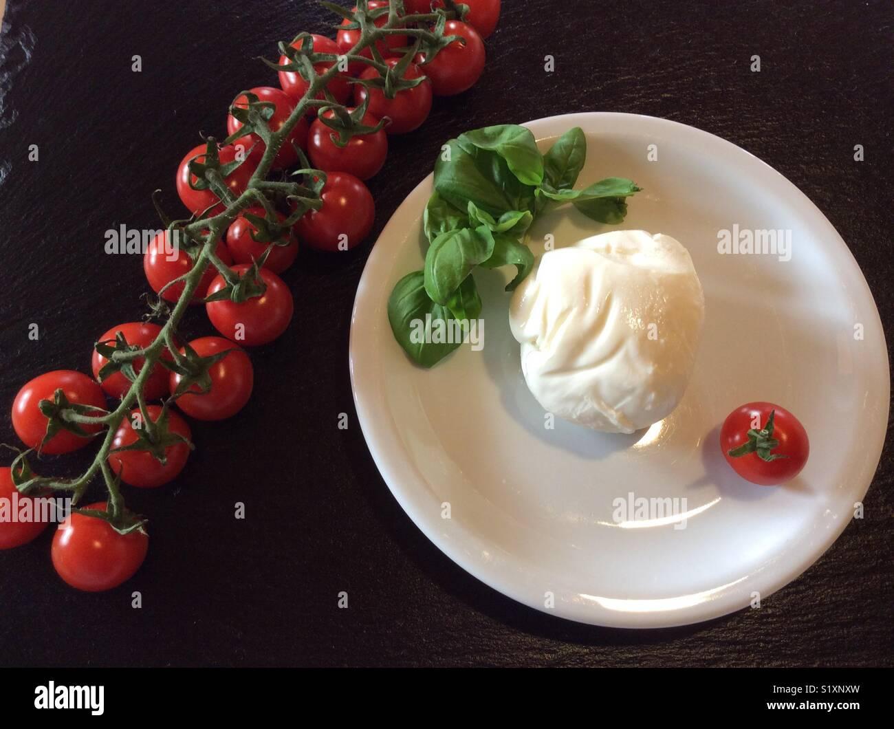 Single Mozzarella cheese ball basil and tomatoes on white porcelain plate & Single Mozzarella cheese ball basil and tomatoes on white porcelain ...