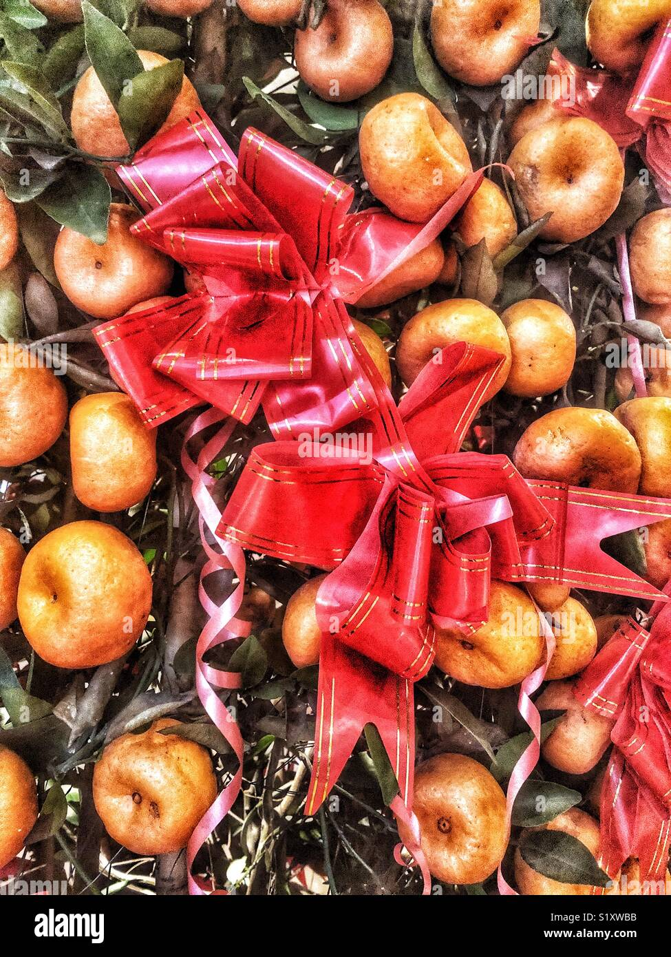 Red bows and citrus fruit for the Chinese New Year - Stock Image